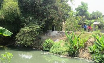 Dinas Kehutanan Ajak Warga Tanam Bambu