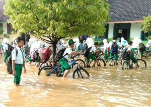 Dampak Banjir Rugikan Petani Tuban Rp22,7 M