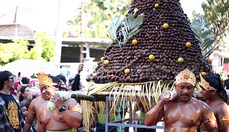 Meriahnya Festival Kampung Salak di Rengel, Tuban