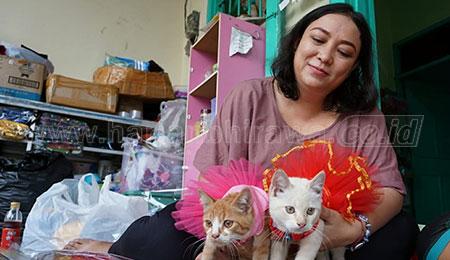 Comelnya Baju Kucing dan Anjing Kreatifaitas Dini Arianti