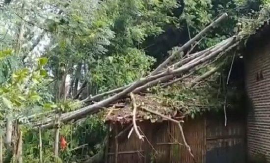 Lima Kecamatan di Probolinggo Diterjang Puting Beliung