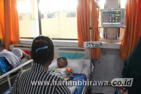Musim Penghujan, Awas Serangan Demam Berdarah Dengue