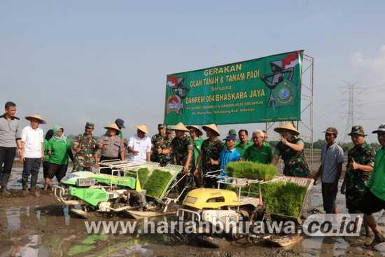 Danrem 084 Bhaskara Jaya – Pemkab Sidoarjo Olah Tanah dan Tanam Padi