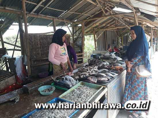 Nelayan Sendangbiru Malang Tak Melaut, Harga Ikan Laut Melambung Tinggi