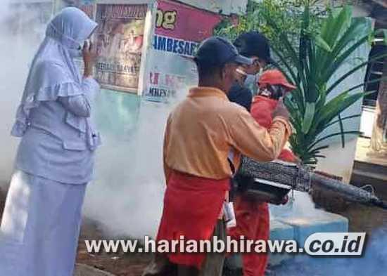 Kecamatan Pujer Kabupaten Bondowoso Darurat Penyakit DBD