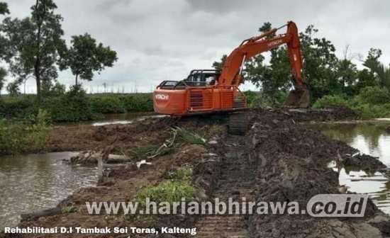 Lahan Seluas 165.000 Hektar di Kalteng Akan Dijadikan Food Estate