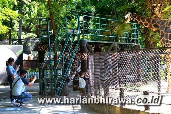 Hari Pertama Buka, Pengunjung Kebun Binatang Surabaya Patuhi Protokol Kesehatan