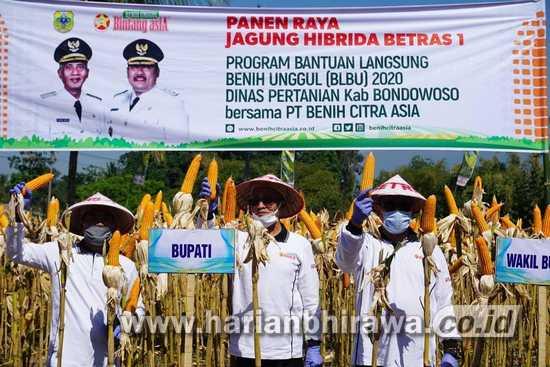 Era Pandemi Covid-19, Petani Bondowoso Diharapkan Tetap Produktif dan Inovatif