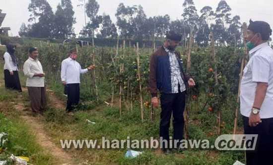 Sugito: Agar Harga Tak Anjlok, Perlu Bangun Pasar Sayur di Sumber