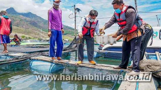 A Rasyid Naja: PLN Peduli Bangkitkan Kembali Semangat Budidaya Ikan