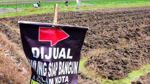 Ancaman Tergerusnya Lahan Pertanian