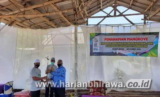 Pulihkan Ekonomi, Pemkab-BPSPL Denpasar Tanam 10.000 Mangrove