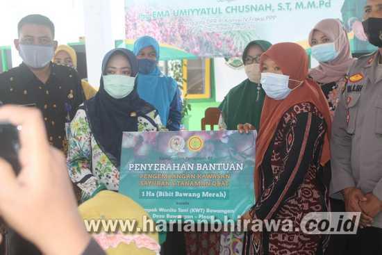 Ning Ema Serahkan Bantuan Bibit Bawang Merah KWT Se-Kecamatan Ploso Jombang