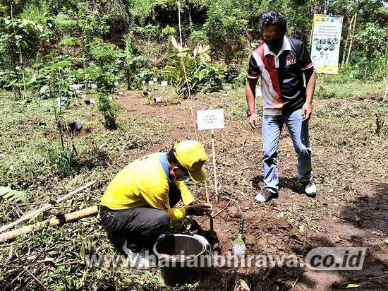 Selamatkan Air Kota Batu dengan Tanam Pohon dan Pasang Biopori
