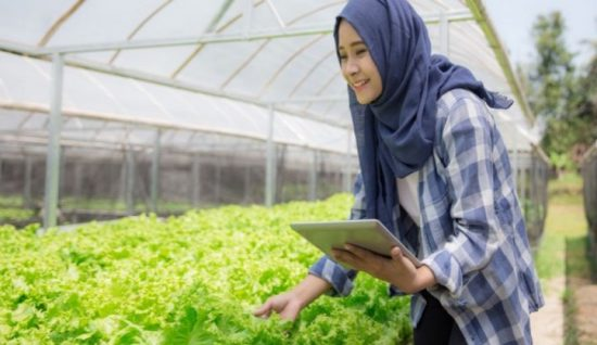 Wujudkan SDM Pertanian Berdaya Saing