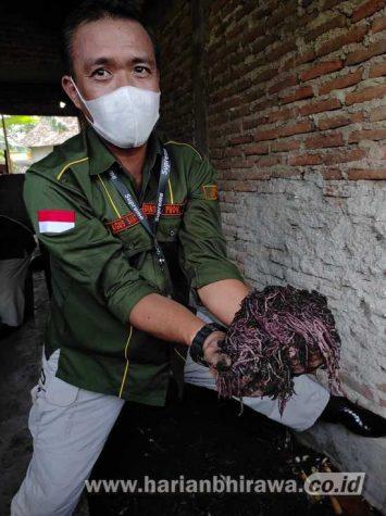 Dinsos Jawa Timur  Realisasikan MoU Kemitraan Budidaya Cacing