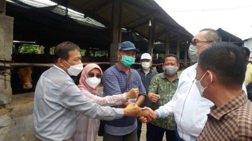 Jajaki Jawa Timur, Suplai Sapi Bakalan Jakarta dan Jawa Barat