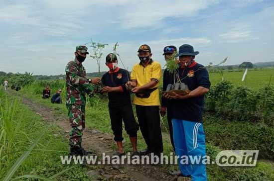 Peduli Lingkungan, Anggota Koramil 0814/09 Kudu Jombang Tanam Pohon