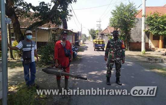 Cegah DBD, Babinsa Koramil 0814/03 Tembelang Jombang Lakukan Fogging