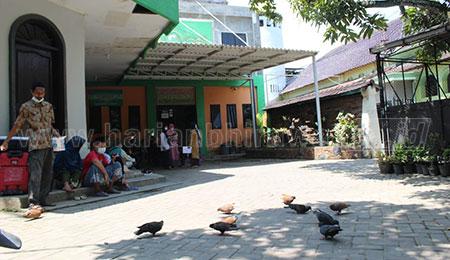 Kisah Asal Usul Merpati di Ndalem Kasepuhan PPBU Tambak Beras Jombang