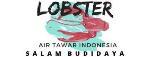 Saatnya Budidaya Lobster Domestik