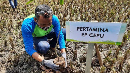 Pekerja PEPC dan Warga Lakukan Pelestarian Lingkungan di Desa Bandungrejo Bojonegoro