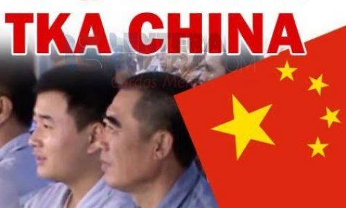 Kalkulasi Untung Rugi TKA China Masuk RI