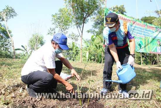 Peduli Lingkungan, Bupati Lamongan Canangkan Penanaman Bambu