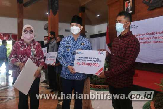 BNI Kucurkan KUR pada Petani Porang di Kabupaten Trenggalek