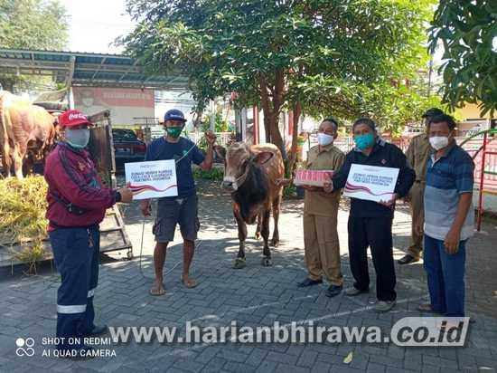 Coca-Cola Europacific Partners Indonesia Donasi Hewan Kurban di Jawa-Bali