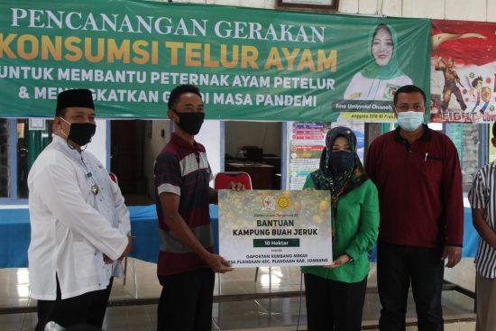Desa Plandaan Jombang Diproyeksikan Jadi Kampung Jeruk