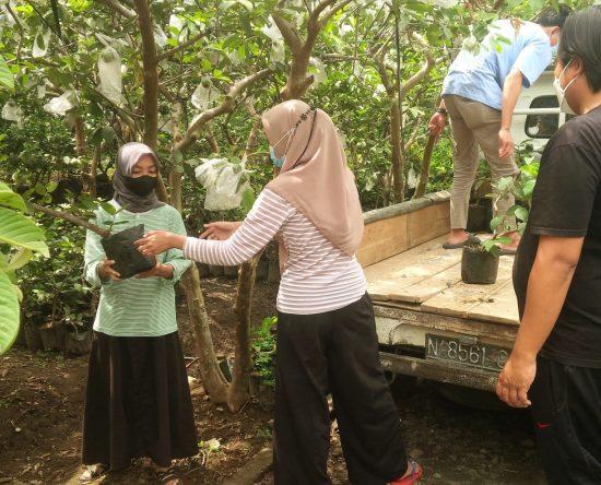 Manfaatkan Tanah Bengkok, Kembangkan Wisata Pertanian Desa Giripurno Kota Batu