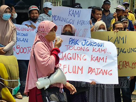 Peternak Ayam Tagih Janji Presiden Jokowi