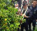Menteri Pertanian Minta Balitjestro Batu Penuhi Kebutuhan Nasional Bibit Jeruk